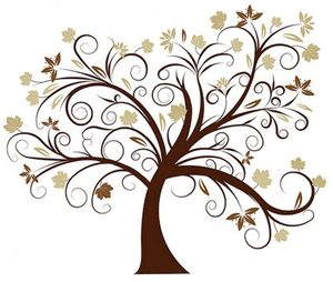 Building you Family Tree - the female side