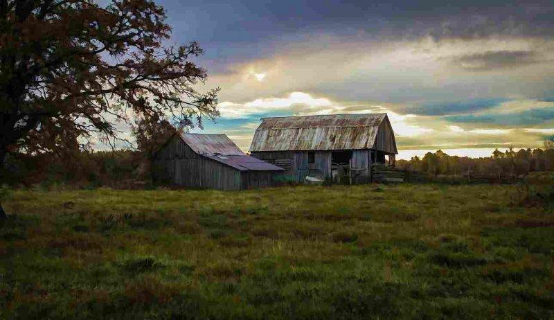 Barn 1 - Barry Gray Barn Early Morning Farm
